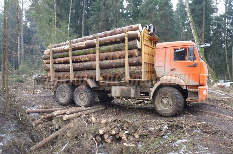 опыт картинка лесовозы камаз редких случаях